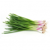 Spring Onions +/-100g