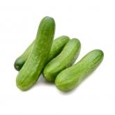 Mini Cucumber +/-230g