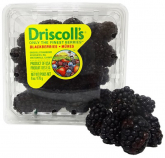 DRISCOLL'S Blackberries +/-170g